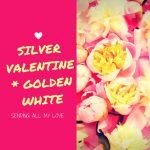 シルバーバレンタインゴールデンホワイト|バレンタイン書き下ろし
