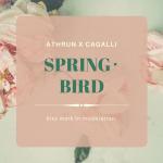 SPRING・BIRD