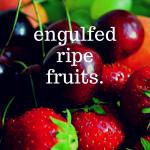 熟れた果実を貪って