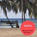 【2018年8月16日限定無料】Siesta(パスキー(500円)購入者は閲覧可)